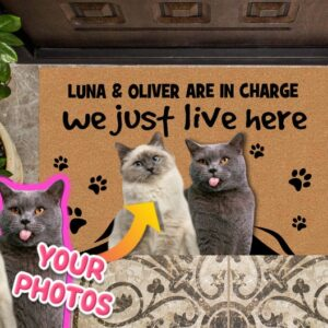 ATTACHMENT DETAILS Custom-Cat-Photo-Doormat-We-Just-Live-Here-Cats-are-in-charge-Door-Mat-Personalized-Cat-Welcome-Mat